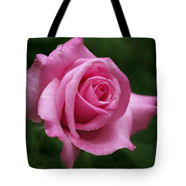 Pink Rose Perfection Tote Bag by Rona Black