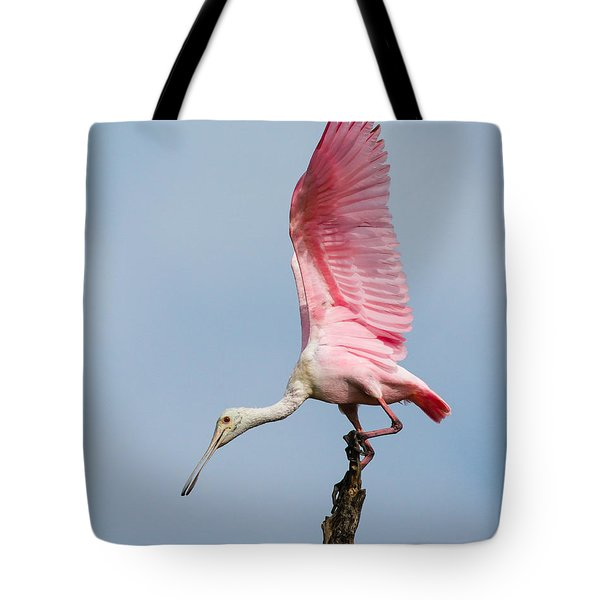 Pink Spoonbill Ready For Takeoff Tote Bag by Bill Swindaman