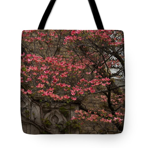 Pink Spring - Dogwood Filigree and Lace Tote Bag by Georgia Mizuleva