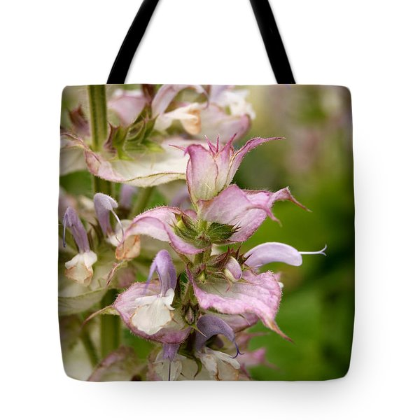 Pink Summer Sage Tote Bag by Eva Kaufman