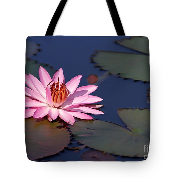 Pink Water Lily In The Spotlight Tote Bag by Sabrina L Ryan