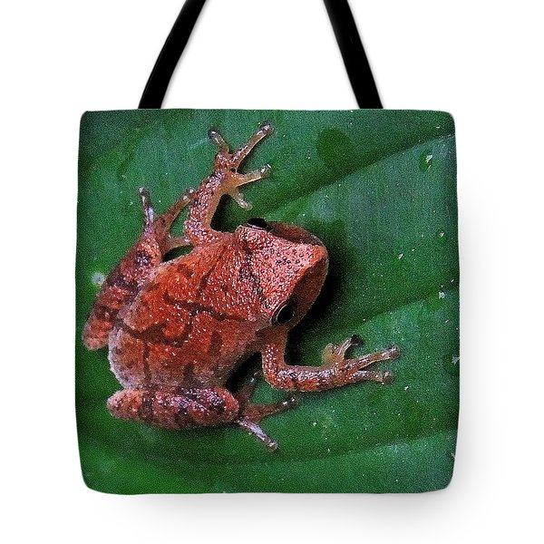 Pinkletink Tote Bag by Mim White