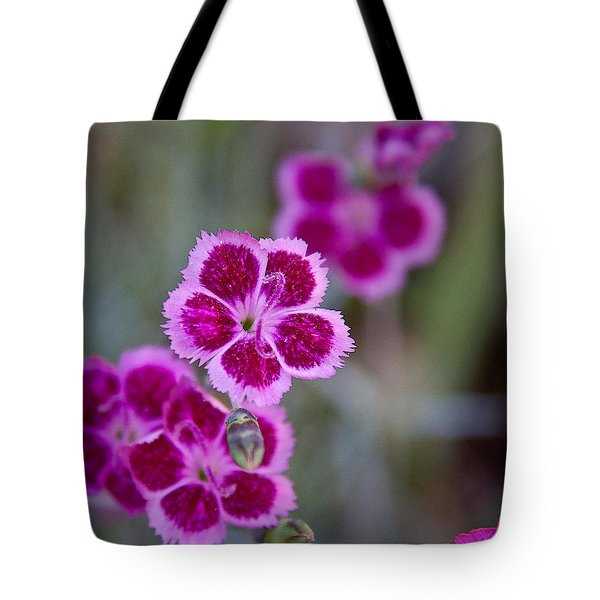 Pinks Tote Bag by Frank Tozier