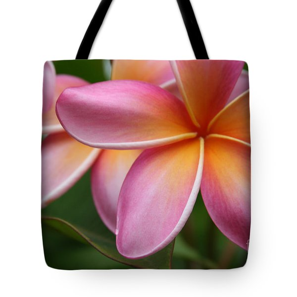 Places Of The Heart Tote Bag by Sharon Mau