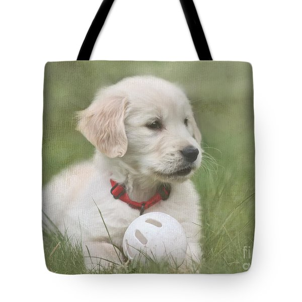 Play Ball Tote Bag by Jayne Carney