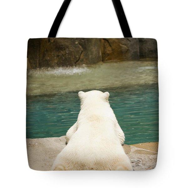 Playful Polar Bear Tote Bag by Adam Romanowicz