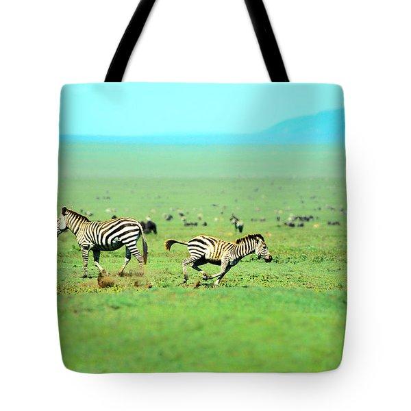 Playfull Zebras Tote Bag by Sebastian Musial