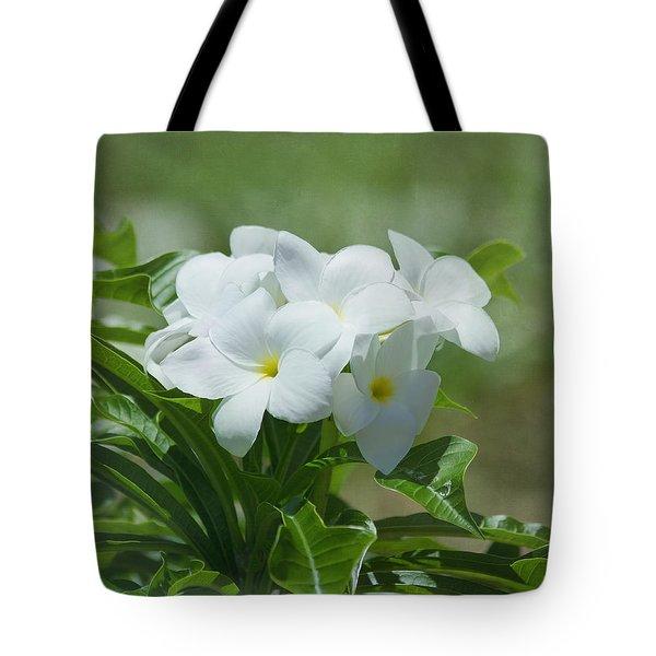 Plumeria - Tropical Flowers Tote Bag by Kim Hojnacki