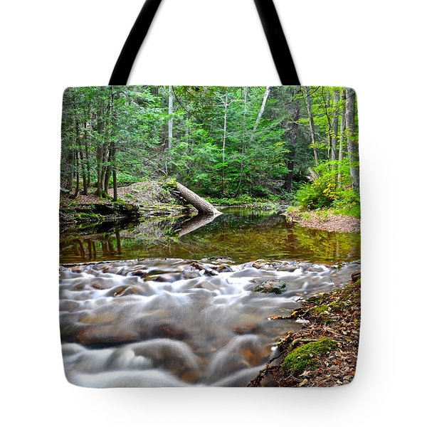 Poetic Side Of Nature Tote Bag by Frozen in Time Fine Art Photography