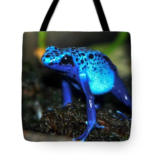 Poison Blue Dart Frog Tote Bag by Optical Playground By MP Ray