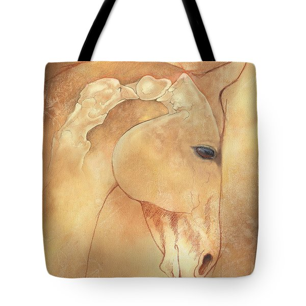 Poll Meet Atlas Axis Tote Bag by Catherine Twomey