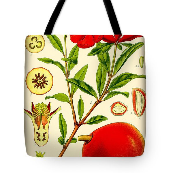 Pomegranate Tote Bag by Nomad Art And  Design