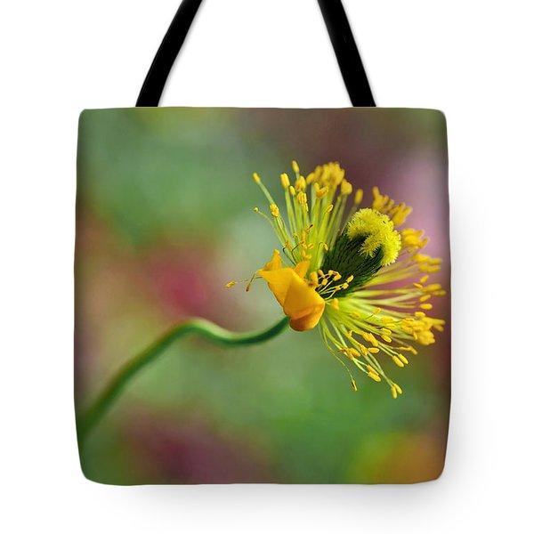 Poppy Seed Capsule Tote Bag by Kaye Menner
