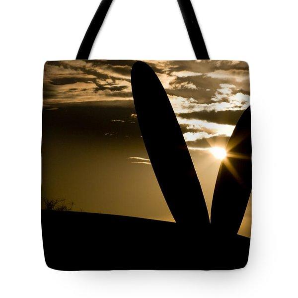 Porter Sunset Tote Bag by Paul Job