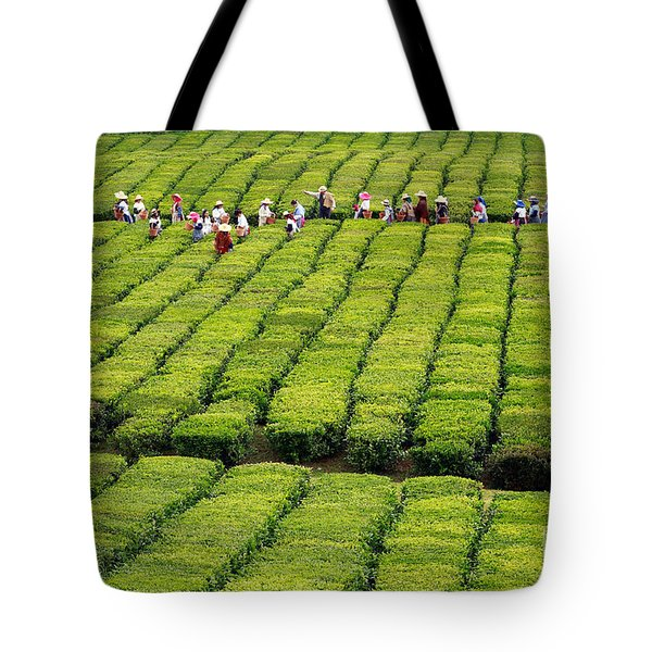 Porto Formoso Tea Gardens Tote Bag by Gaspar Avila