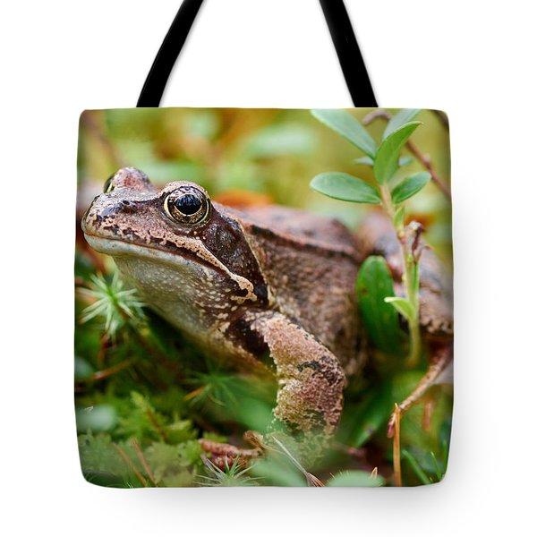 Portrait Of A Frog Tote Bag by Jouko Lehto