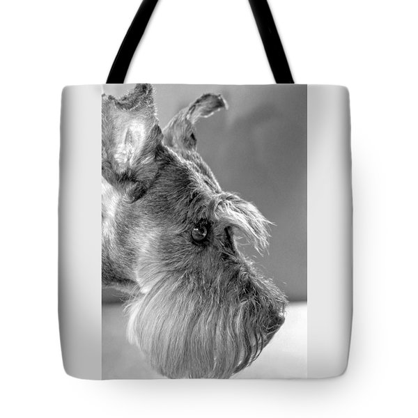 Portrait Of Gretl Tote Bag by  Andrea Lazar