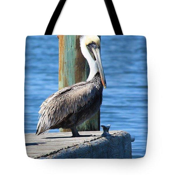 Posing Pelican Tote Bag by Carol Groenen