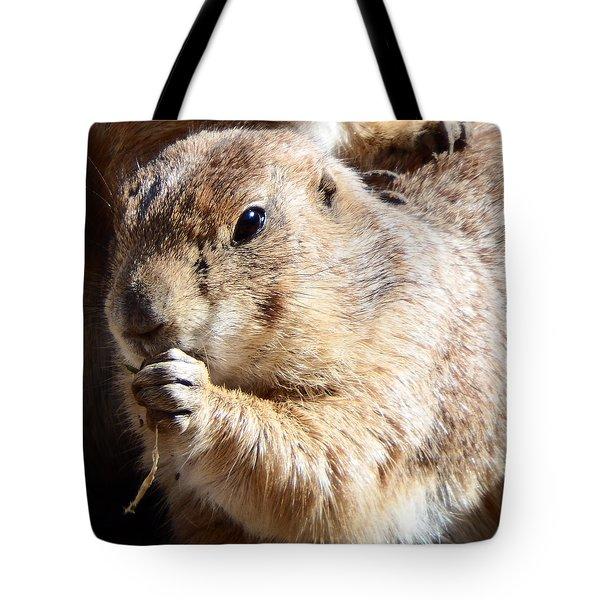 Prairie Dog Tote Bag by David G Paul