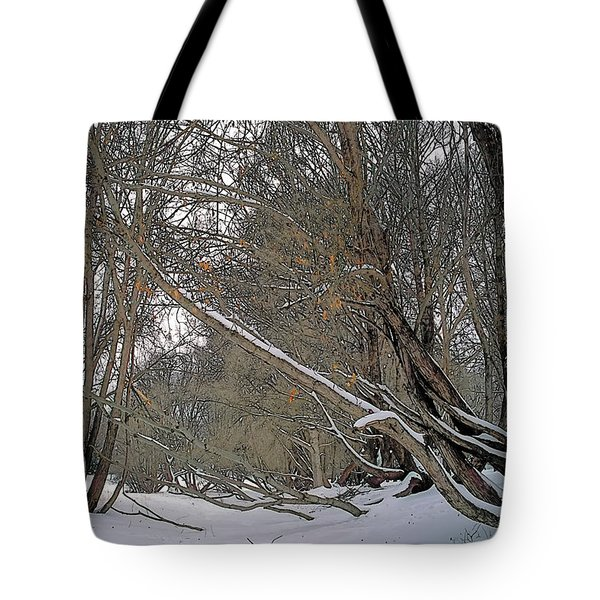 Prairie Winter 2 Tote Bag by Terry Reynoldson