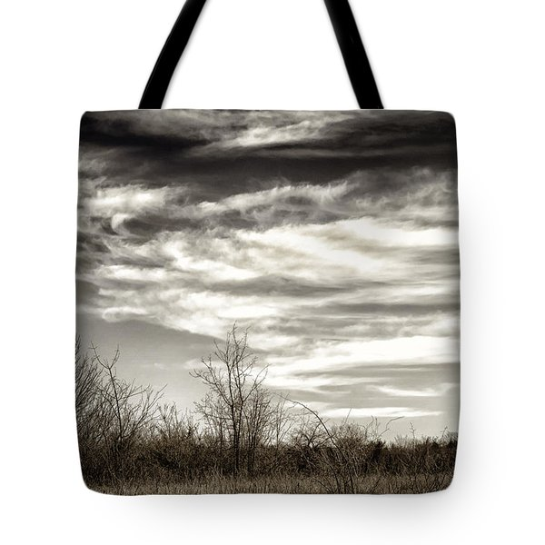 Prairie Winter Sky Tote Bag by Joan Carroll