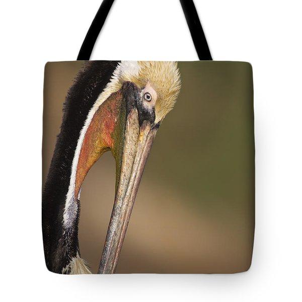 Preening Pelican Tote Bag by Bryan Keil