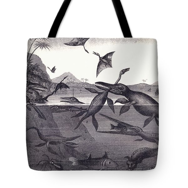 Prehistoric Animals Of The Lias Group Tote Bag by English School