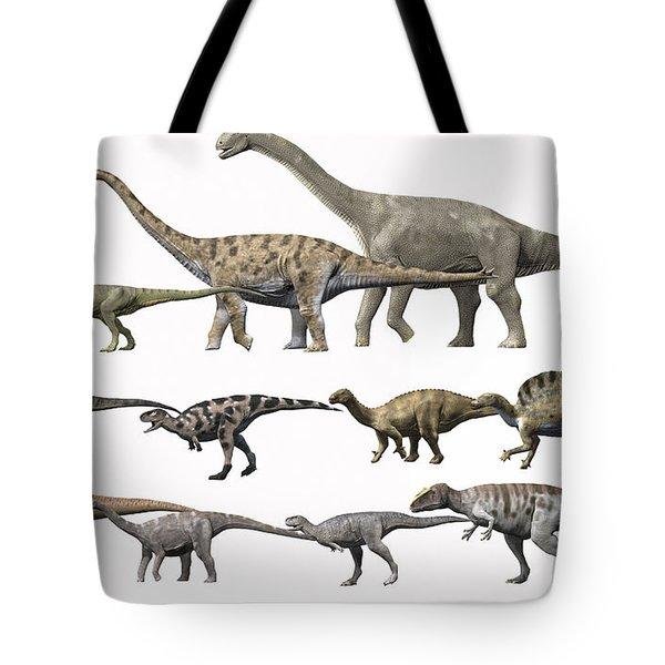 Prehistoric Era Dinosaurs Of Niger Tote Bag by Nobumichi Tamura