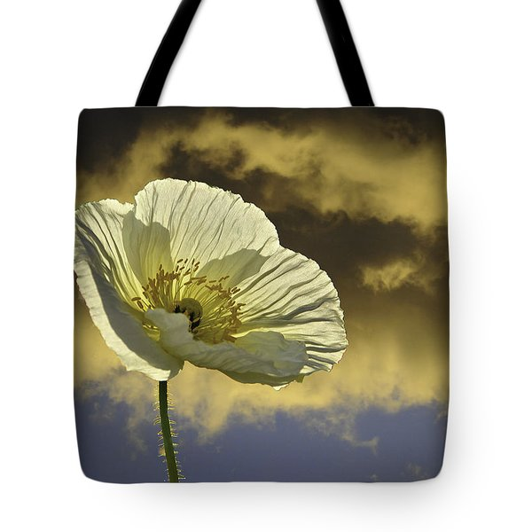 Prelude To Spring Tote Bag by Lynn Bauer