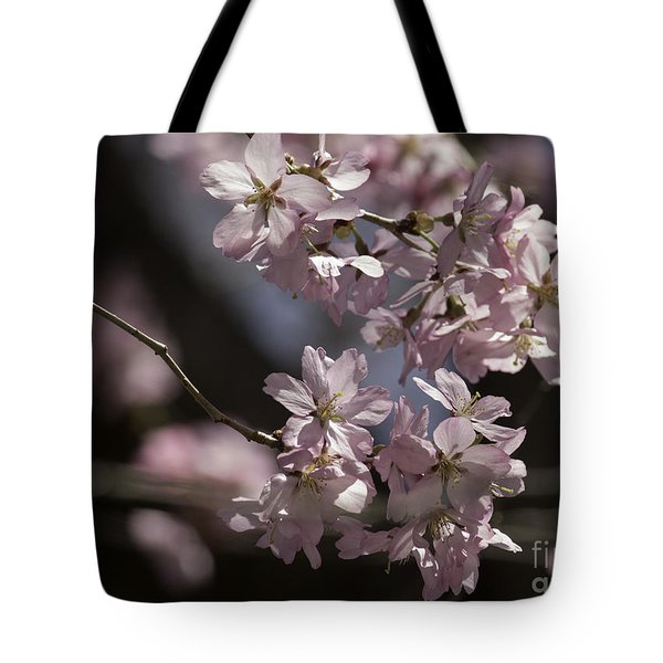 Pretty In Pink Blossom  Tote Bag by Arlene Carmel