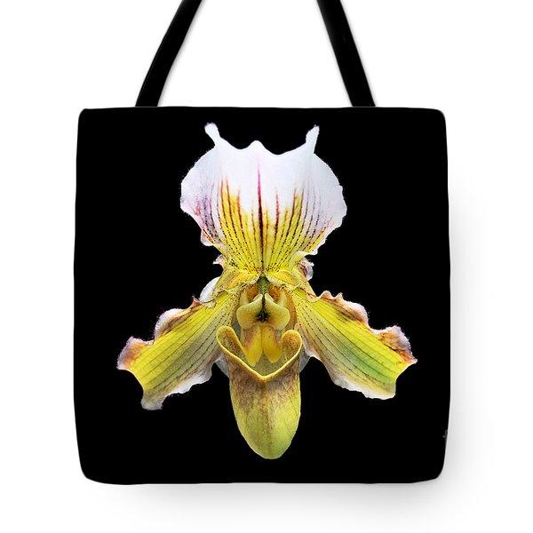 Pretty Paphiopedilum Orchid Ver. 2 Tote Bag by Susan Wiedmann