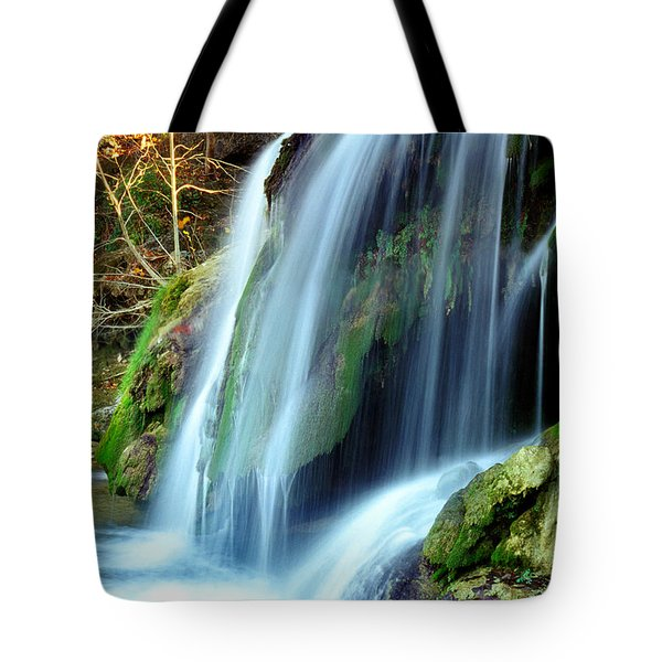 Price Falls 4 Of 5 Tote Bag by Jason Politte
