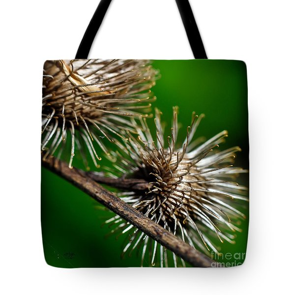 Prickly Tote Bag by Lois Bryan