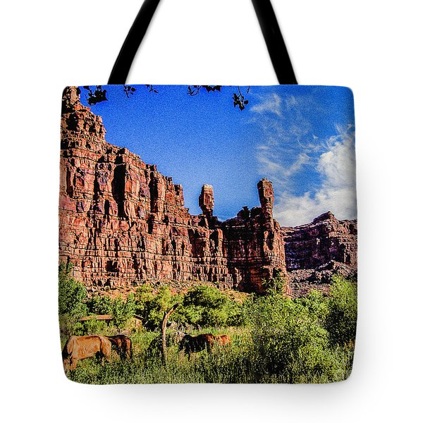 Private Home Canyon Dechelly Tote Bag by Bob and Nadine Johnston