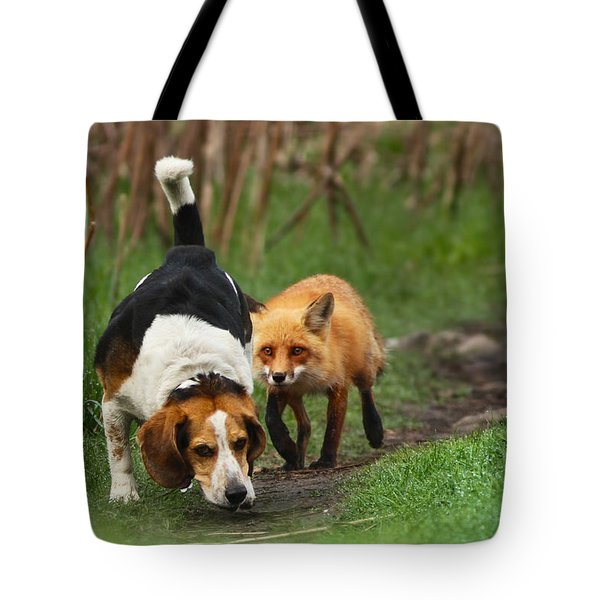 Probably The World's Worst Hunting Dog Tote Bag by Mircea Costina Photography