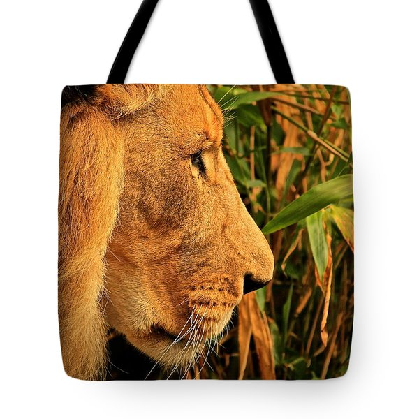 Profiles Of A King Tote Bag by Laddie Halupa