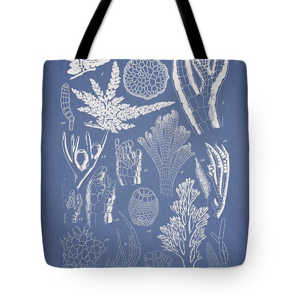Pterosiphonia fibrillosa Tote Bag by Aged Pixel