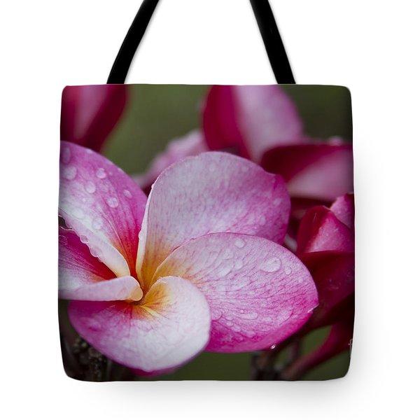 Pua Melia Floral Celebration Tote Bag by Sharon Mau