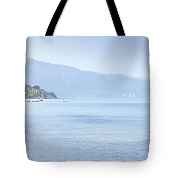 Puerto Vallarta beach in Mexico Tote Bag by Elena Elisseeva