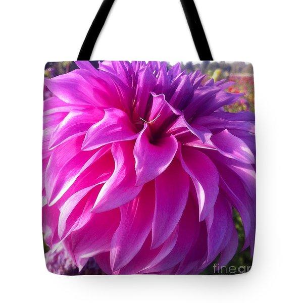Puff Of Pink Dahlia Tote Bag by Susan Garren