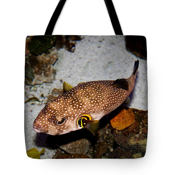 Pufferfish 5D24157 Tote Bag by Wingsdomain Art and Photography