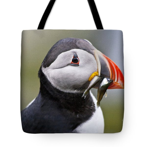 Puffin Tote Bag by Heiko Koehrer-Wagner