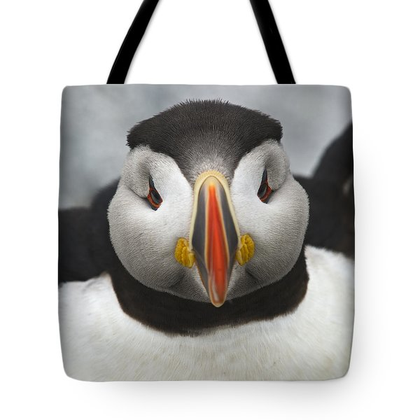 Puffin It Up... Tote Bag by Nina Stavlund