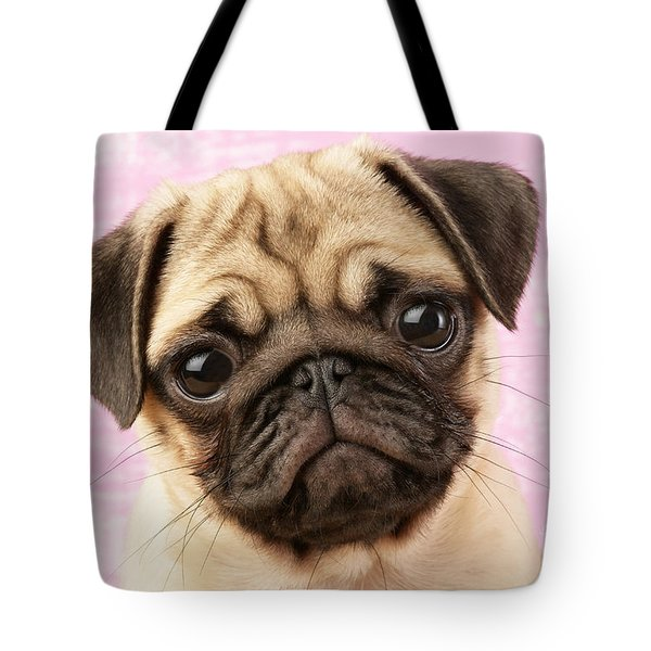 Pug Portrait Tote Bag by Greg Cuddiford