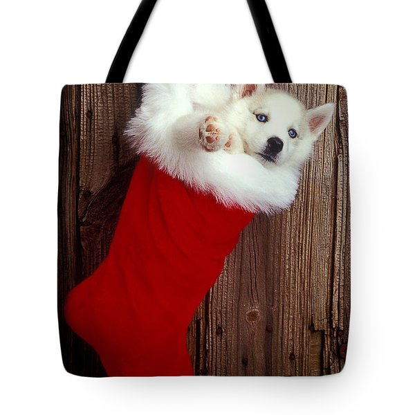 Puppy In Christmas Stocking Tote Bag by Garry Gay