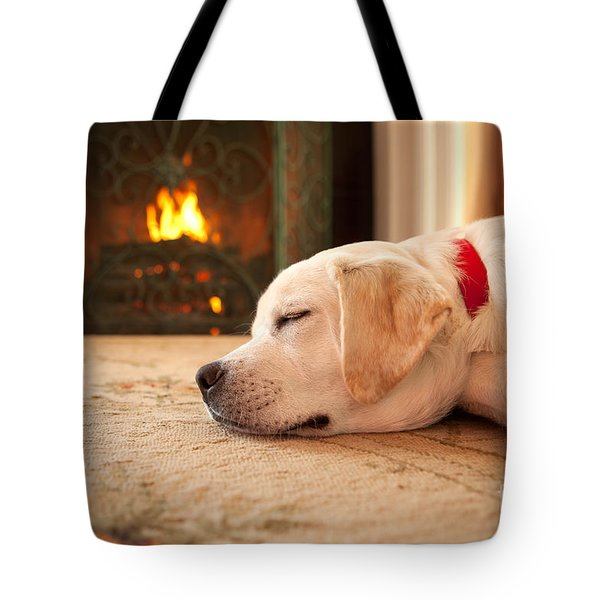 Puppy Sleeping By A Fireplace Tote Bag by Diane Diederich