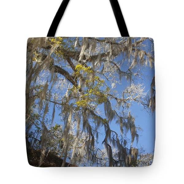 Pure Florida - Spanish Moss Tote Bag by Christine Till
