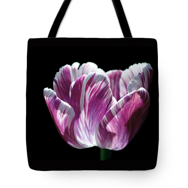 Purple And White Marbled Tulip Tote Bag by Rona Black
