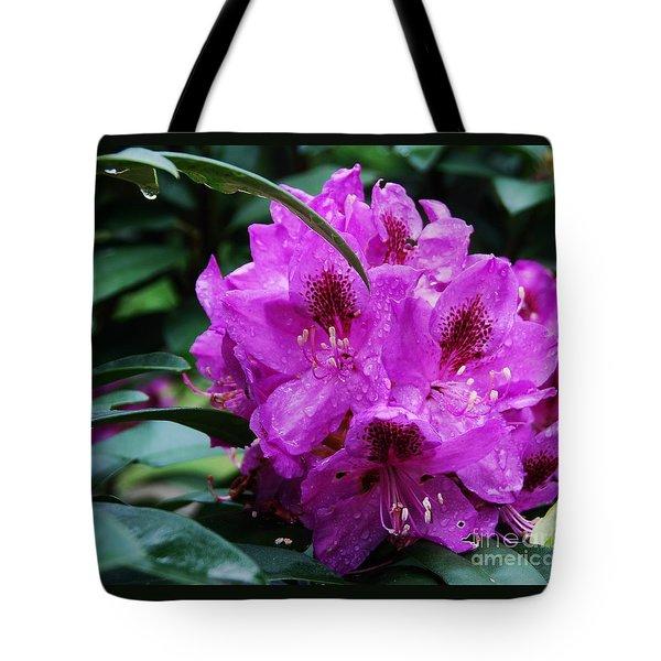 Purple Azelia Tote Bag by Marcus Dagan