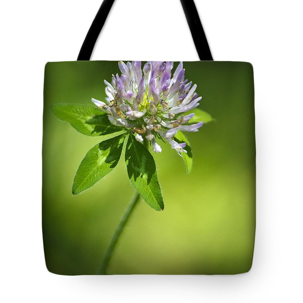 Purple Clover Flower Tote Bag by Christina Rollo
